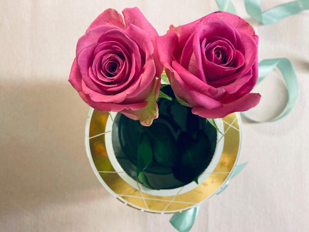 Blumen in Rosenbox einstellen