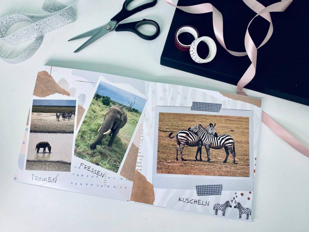 personalisiertes Kinderbuch: Was machen die Tiere dort?