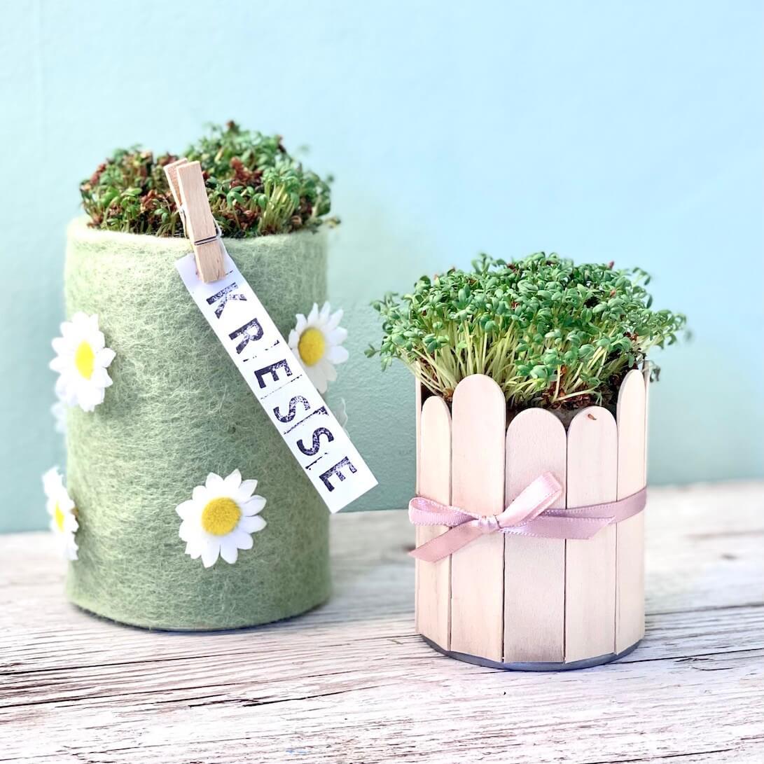 Kresse pflanzen- Behälter selber machen